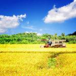 農地信託の家族信託・民事信託を行う条件や農地法での制限