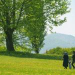 お金や不動産の追加信託で相続対策する家族信託の方法